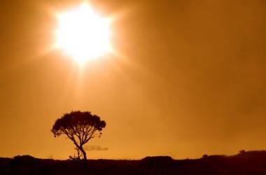 如果我們守望西方,我們永不會看見日出。