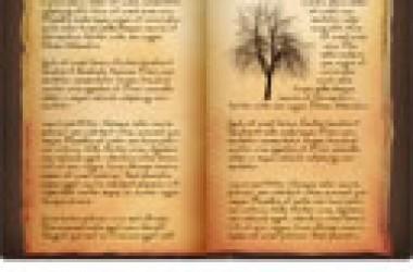 編外一章 : 遠離善惡樹,進入生命樹
