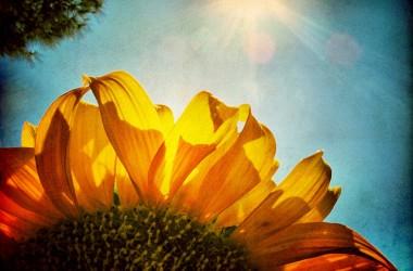上帝的公義如同太陽已照耀你,迎向祂的榮光… 打開你的心房,在上帝各樣的福份上擴張你的帳幕