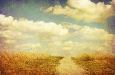 那些信靠基督的人得與上帝和好,並有主引導他們一生的道路…
