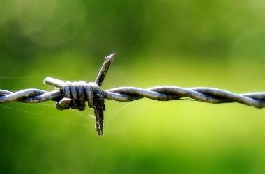若你現在正被疑慮恐懼牢牢轄制,耶穌樂意釋放你,給你自由與喜樂…