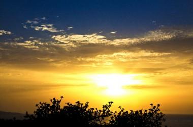 拾起夢想,抬起頭來… 人們也許忘了你,但上帝絕不會遺忘你…