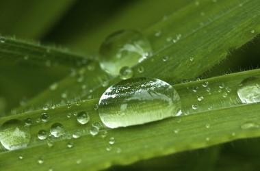 今天,如果你正處在乾旱無水之地。你要知道,喜樂的泉源將要來了…