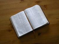 以禱告的心認真研讀聖經
